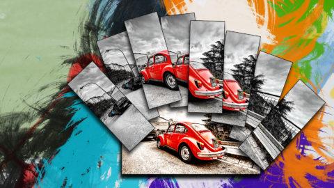 collage maggiolino albano nicola foto nka.it
